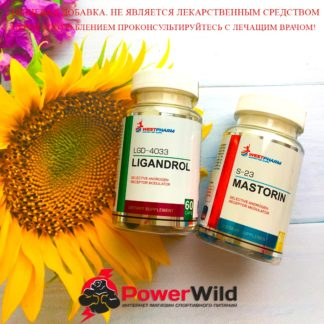 mastorin+ligandrol курс фото