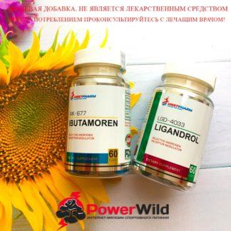 ligandrol+ibutamoren курс фото оригинал вестфарм
