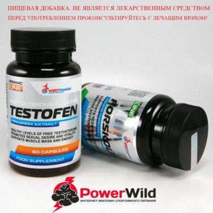 Тестофен + Форсколин вестфарм