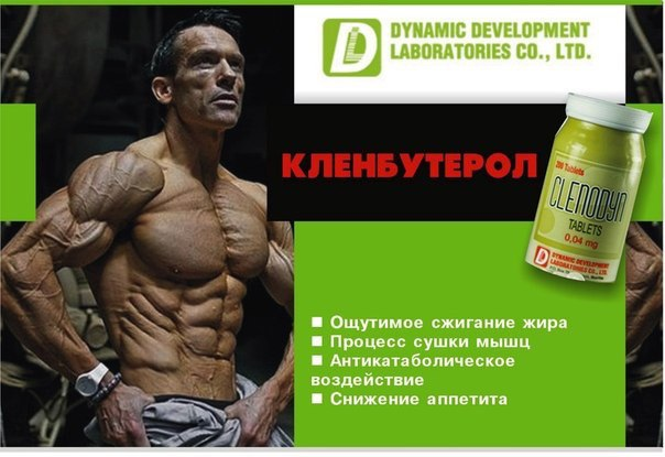 Clenodyn - Кленбутерол Dynamic Development, 200 таблеток жиросжигатель купить