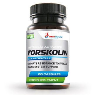 Forskolin WestPharm 60 капсул по 250 мг жиросжигатель купить