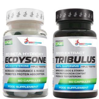 Купить выгодно курс на массу и силу Ecdysone + Tribulus terrestris WestPharm