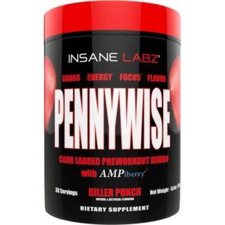 Купить недорого Pennywise Insane Labz 413 гр 30 порций